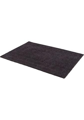 Hochflor - Teppich, »Livorno Melange«, ASTRA, rechteckig, Höhe 27 mm, maschinell getuftet kaufen