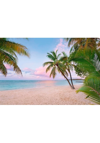 KOMAR Vliestapete »Paradise Morning« kaufen