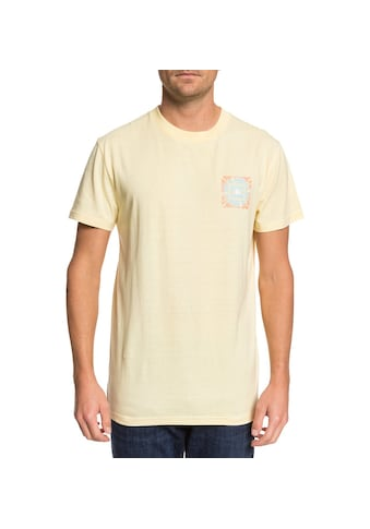 DC Shoes T - Shirt »Shattered« kaufen