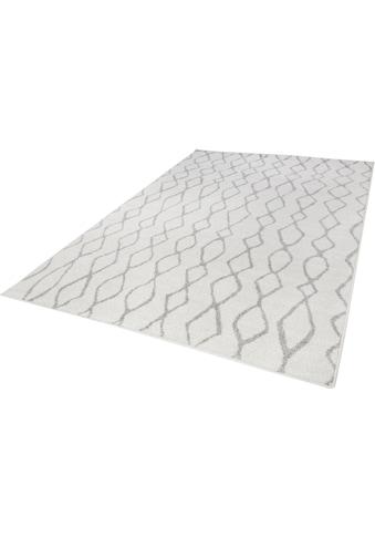 Andiamo Teppich »Bolonia 92«, rechteckig, 6 mm Höhe, Rauten Design, Wohnzimmer kaufen