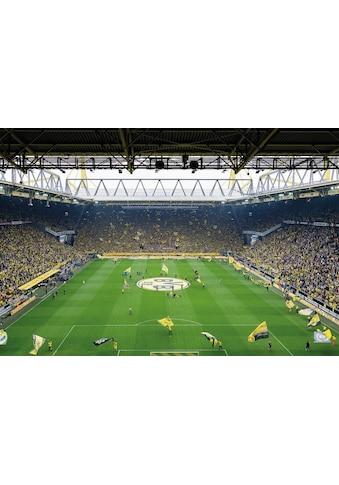 Wall-Art Fototapete »BVB - Fan-Choreo« kaufen