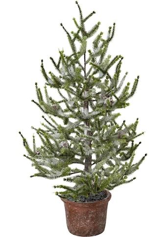 Kunstbaum »Fichte im Topf« (1 Stück) kaufen