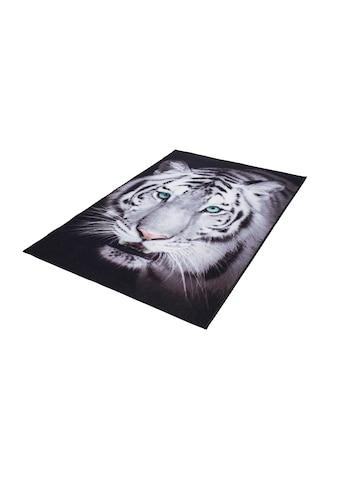 Teppich, »Weisser Tiger«, Andiamo, rechteckig, Höhe 4 mm, maschinell getuftet kaufen