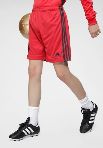 adidas Performance Trainingsshorts »EM 2021 DFB Torwart-Heimshorts Kinder« kaufen