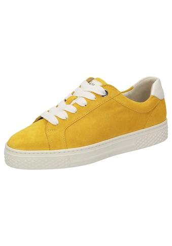 SIOUX Sneaker »Somila - 704 - H« kaufen