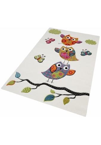 Kinderteppich, »GUADAIRA«, merinos, rechteckig, Höhe 13 mm, maschinell gewebt kaufen