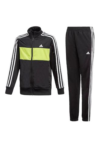 adidas Performance Trainingsanzug »TIBERIO«, (Set, 2 tlg.) kaufen