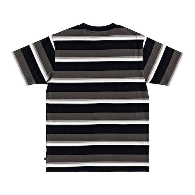 DC Shoes T-Shirt »Wesley Stripes«