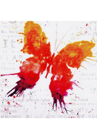 my home Gemälde »Papillon«, (70/3,5/70 cm) kaufen