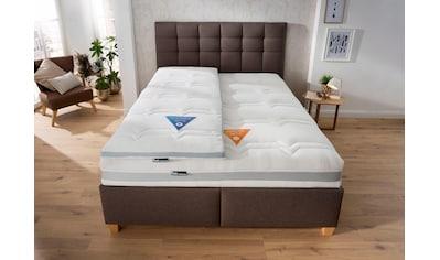 fan Schlafkomfort Exklusiv Komfortschaummatratze »Mabona S«, 23 cm cm hoch,... kaufen