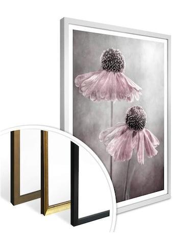 Wall-Art Poster »Rosa Duett«, Schriftzug, (1 St.) kaufen