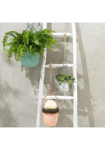 Schneider Blumenampel (Set, 3 Stück) kaufen