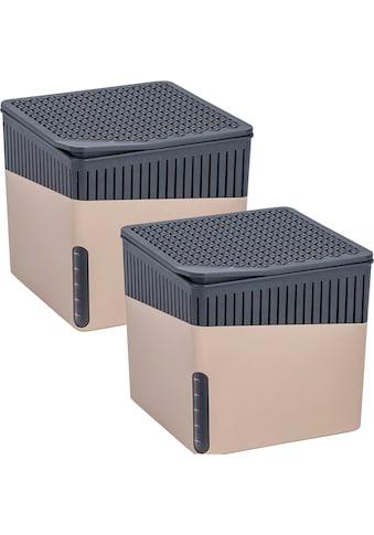 WENKO Luftentfeuchter »Cube Beige«, für 40 m³ Räume kaufen