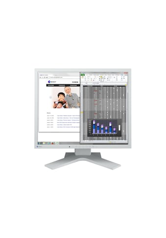 Monitor, EIZO, »S1934H Swiss Garantie« kaufen