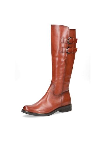 Caprice Stiefel, mit variablen Normalschaft kaufen