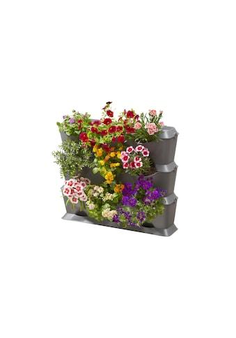 Gartensystem NatureUp! Basis Set Vertikal, Gardena, »Komplettset« kaufen