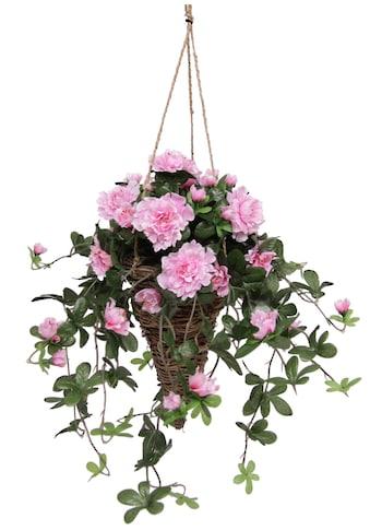 I.GE.A. Kunstpflanze »Azalee in Hängeampel« kaufen