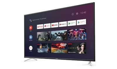TV, Sharp, »55BL2EA« kaufen