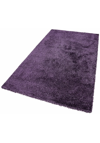 Awesome Tapis Violet Salon Images - House Interior ...