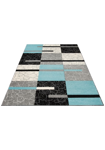 my home Teppich »Lucien«, rechteckig, 10 mm Höhe, weiche Haptik, Wohnzimmer kaufen