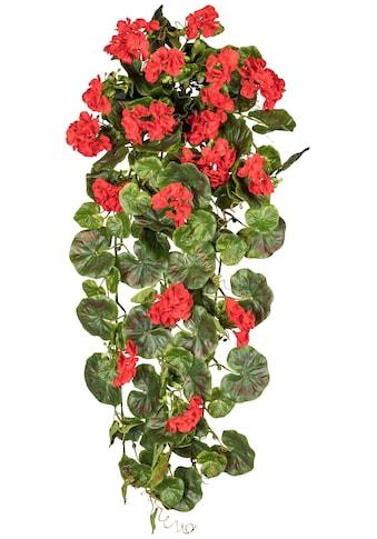 Creativ green Kunstpflanze »Geranienhänger« kaufen