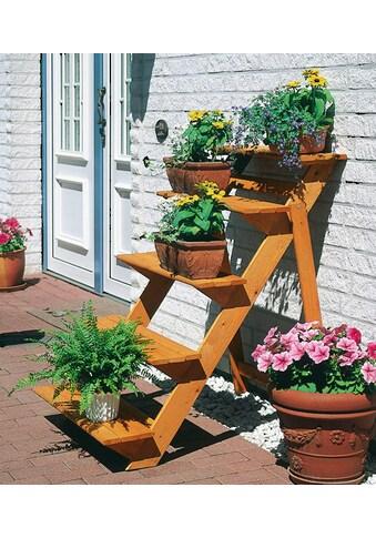 Promadino Rahmenholz »Blumentreppe gross« B/T/H: 78/100/109 cm kaufen