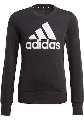 adidas Performance Sweatshirt »ADIDAS GIRLS ESSENTIALS BIG LOGO SWEATSHIRT« kaufen