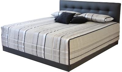 Westfalia Schlafkomfort Polsterbett »Ravenna« kaufen