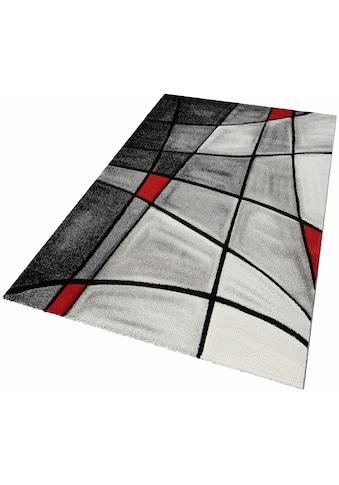 Teppich, »DOUBS«, merinos, rechteckig, Höhe 13 mm, maschinell gewebt kaufen