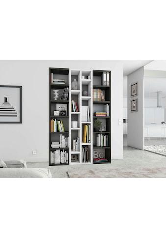 fif möbel Raumteilerregal »TOR391-2«, Breite 145 cm kaufen