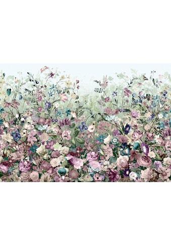 KOMAR Vliestapete »Botanica« kaufen