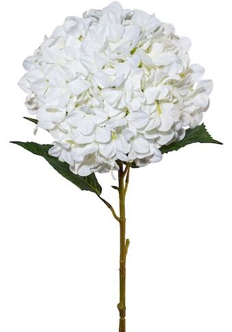 Creativ green Kunstblume »Hortensie XXL« kaufen