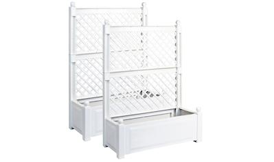 KHW Spalier 2er Set, mit Pflanzkasten, BxTxH: 100x43x140 cm kaufen