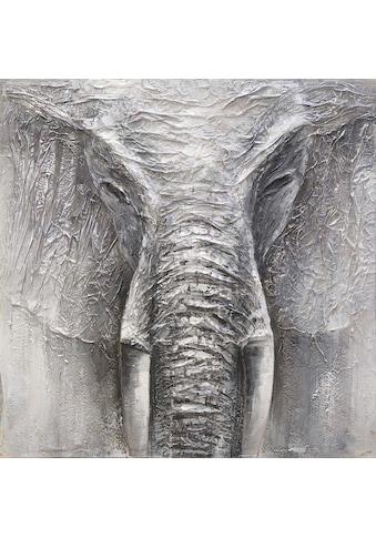 Spiegelprofi GmbH Ölgemälde »Elephant«, 100/100 cm, handgemalt kaufen