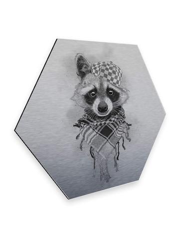 Wall-Art Metallbild »Türschild Waldtiere Waschbär«, (1 St.) kaufen