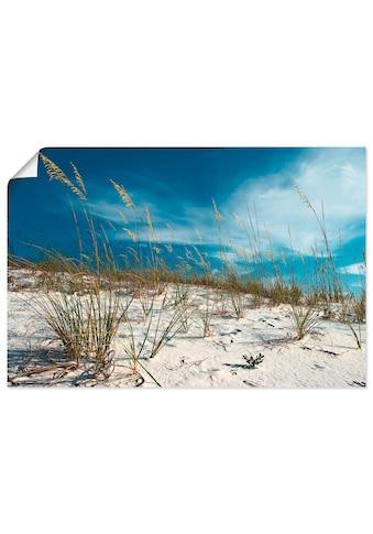 Artland Wandbild »Sanddüne und Gräser«, Strand, (1 St.), in vielen Grössen &... kaufen