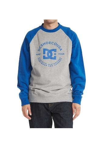 DC Shoes Sweatshirt »DC Star Pilot« kaufen