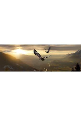 Deco - Panel »Adler« kaufen