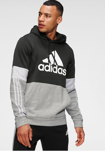 adidas Performance Kapuzensweatshirt »COLORBLOCK HOODED SPORT ESSENTIALS SWEATER« kaufen