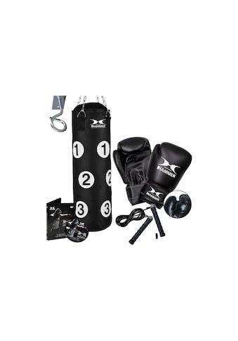 Hammer Boxsack »Sparring Professional«, (Set, mit Boxhandschuhen-mit Trainings-DVD) kaufen