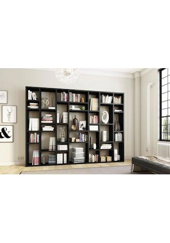 fif möbel Raumteilerregal »TORO 380«, Breite 295 cm kaufen