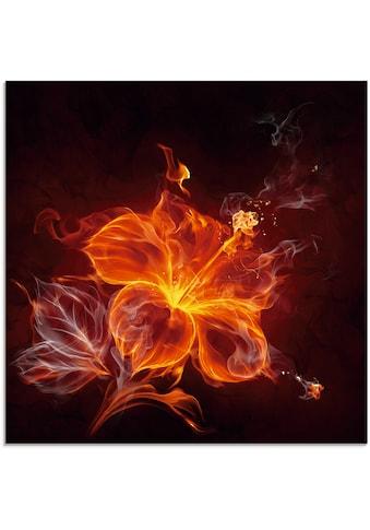 Artland Glasbild »Feuerblume«, Blumen, (1 St.) kaufen
