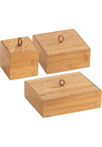 WENKO Aufbewahrungsbox »Terra«, (Set, 3 St.), Organizer-Set kaufen