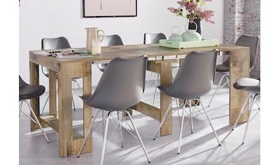 Tecnos Esstisch »Praktika«, ausziehbar auf 300 cm kaufen
