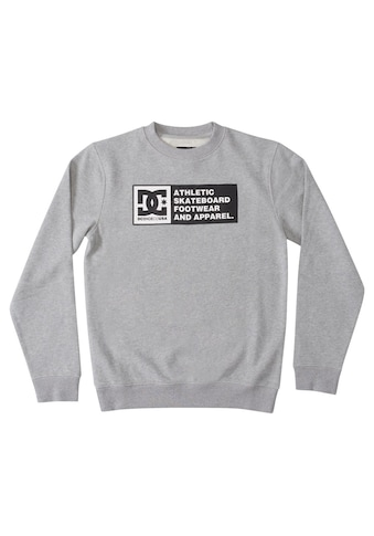 DC Shoes Sweatshirt »DC Density Zone« kaufen