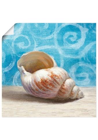 Artland Wandbild »Geschenke aus dem Meer I« kaufen