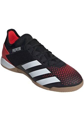 adidas Performance Fussballschuh »Predator 20.3 L IN« kaufen