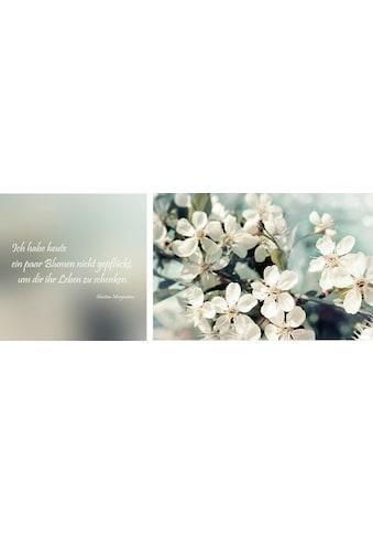 queence Leinwandbild »Leben geschenkt«, (Set), 2er-Set kaufen