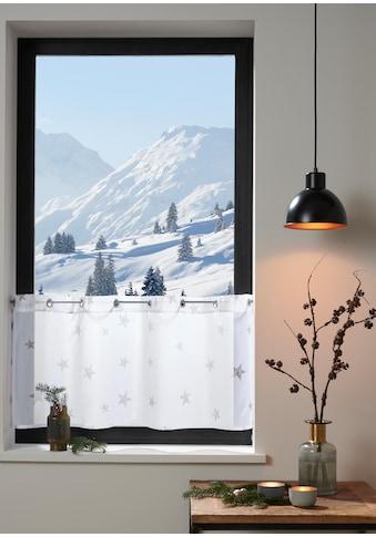 my home Scheibengardine »Stern« kaufen