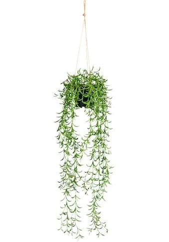 Creativ green Kunstranke »Nerifolia-Hänger«, im Hängetopf aus Kunststoff kaufen